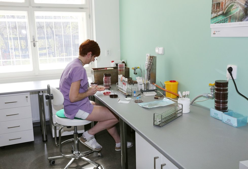 Moderní laboratoře v Nemocnici Na Bulovce