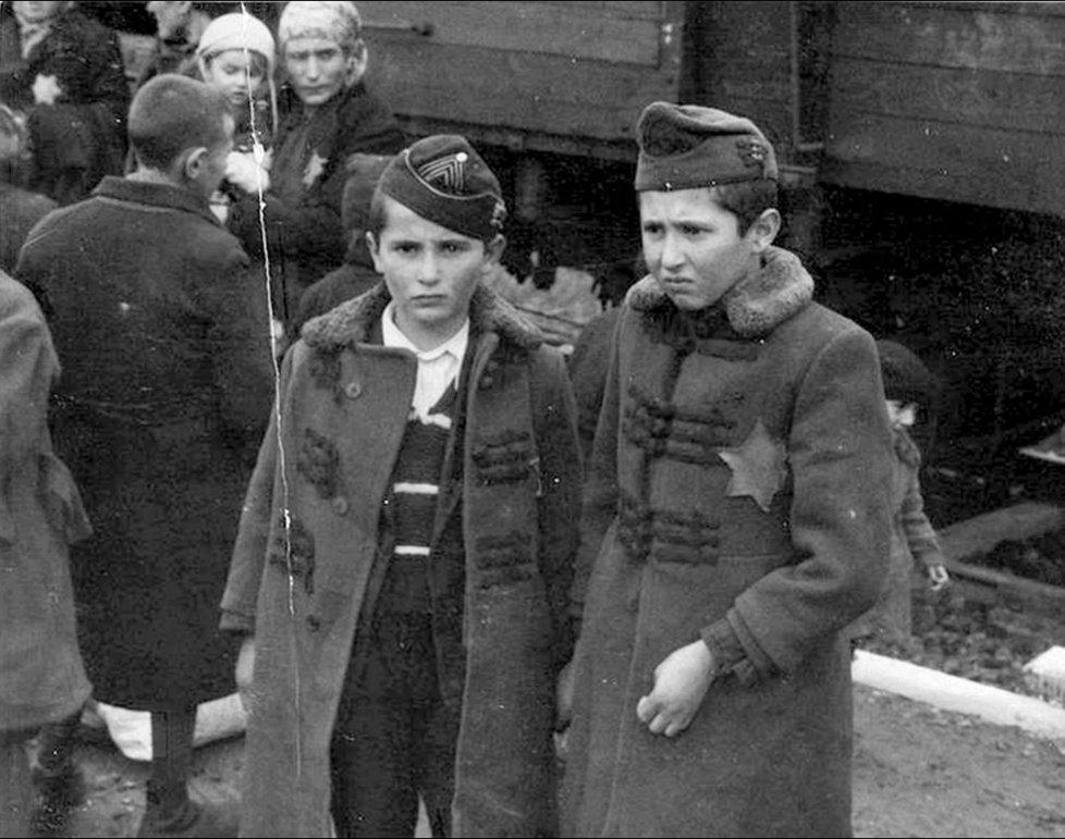 Jedna z fotografií takzvaného Osvětimského alba, které v osvobozeném táboře našla přeživší vězeňkyně Lilly Jacob Zelmanovic-Meierová.
