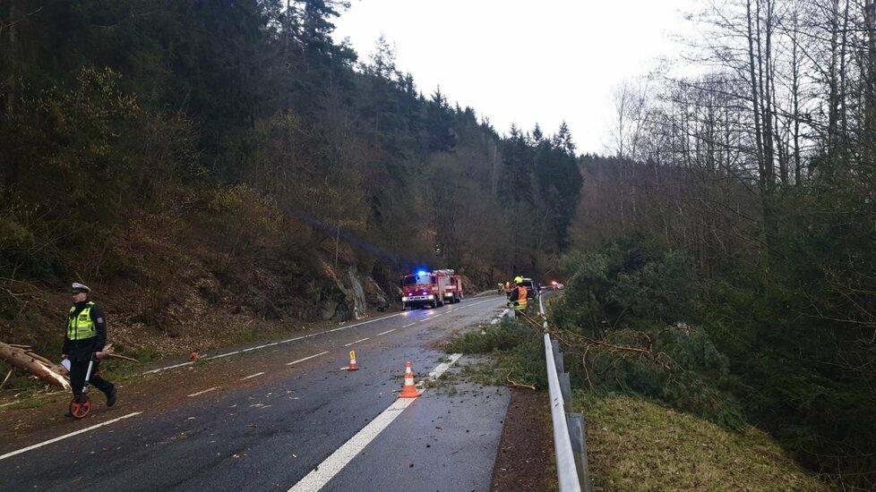 Karlovarský kraj zasáhl silný vítr. Na autobus spadl strom.