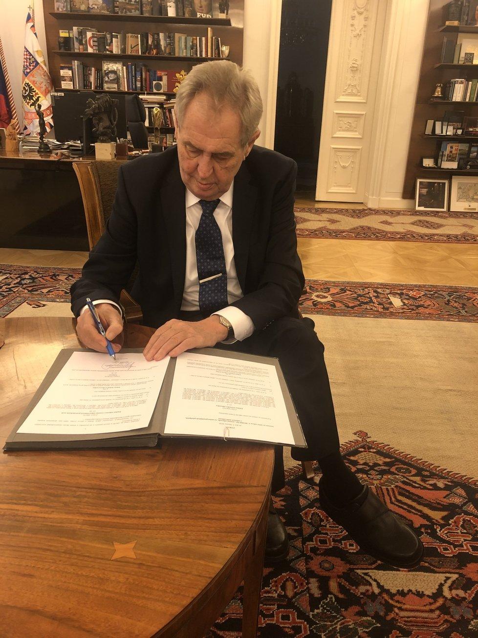 Prezident Zeman podepsal novelu zákona zpřísňující tresty za týrání zvířat