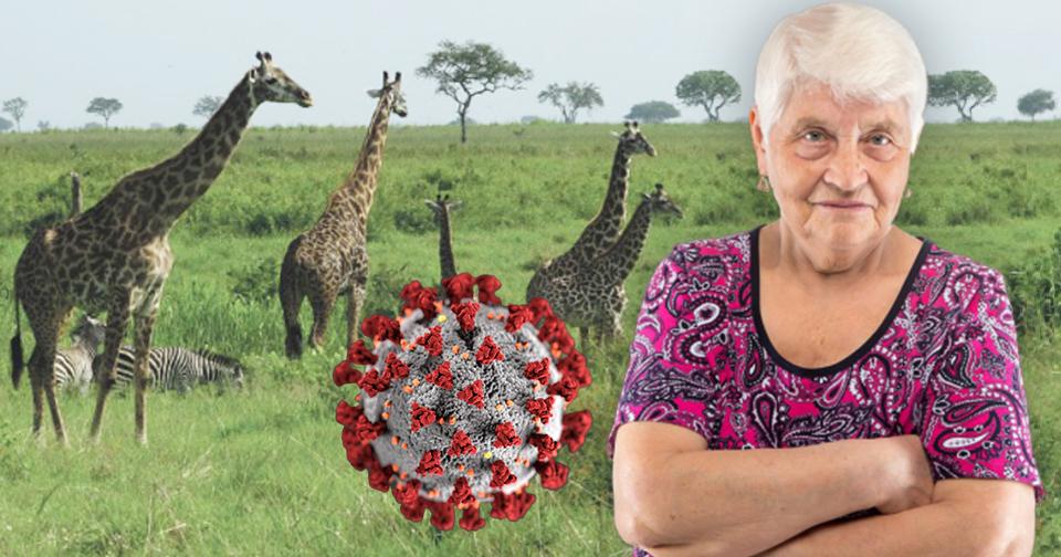 Seniorka šetřila na nákladný zájezd. Teď neví, jak její vysněná cesta dopadne. (Ilustrační foto)