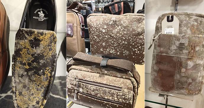 Majitele čekal skutečný šok: Drahé zboží v obchodě během karantény zplesnivělo