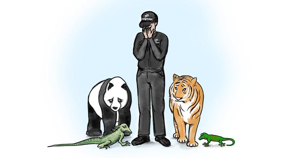 Kanadská ZOO předčasně vrátí pandy Číně.
