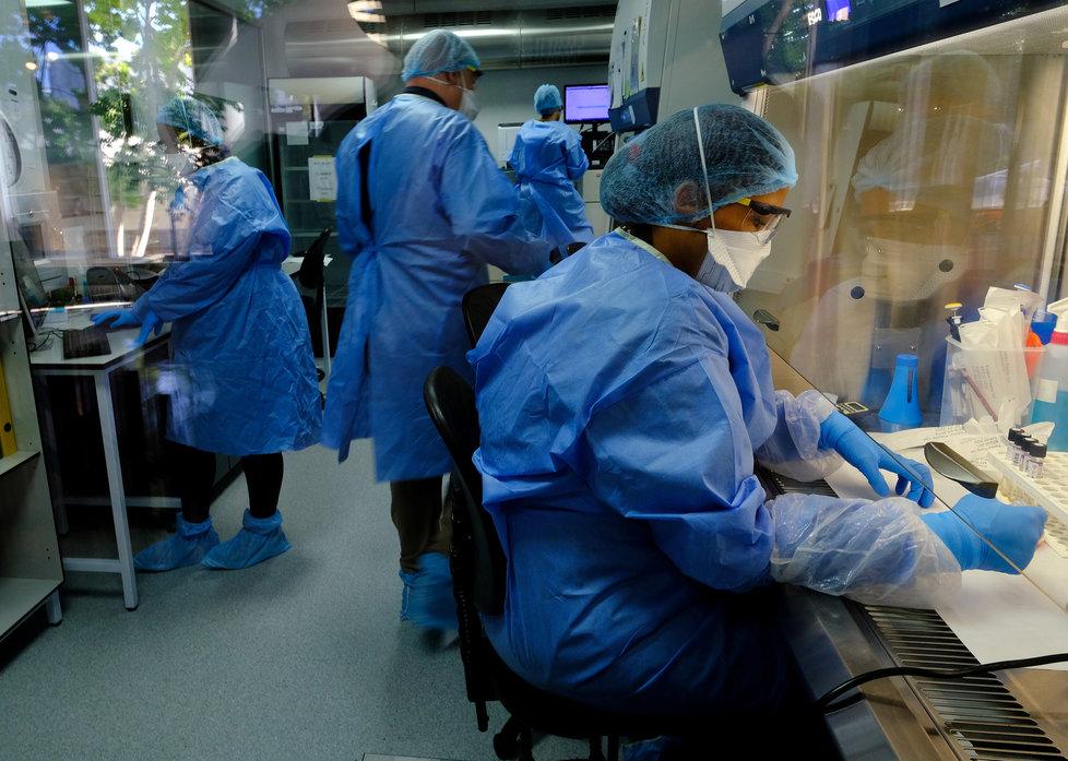 Vědci z celého světa pracují na vývoji vakcíny proti koronaviru.