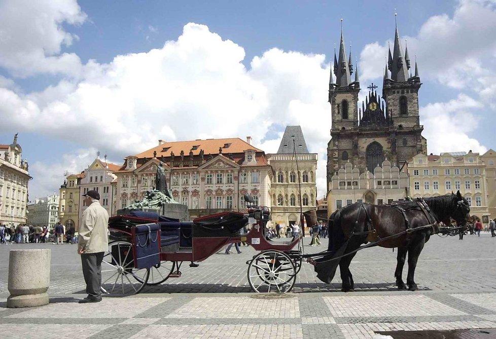 Podle pražských politiků je otázka koňských povozů za turistickým účelem na hraně etiky chování ke zvířatům. Magistrát se možná vážně bude zabývat regulací těchto služeb.