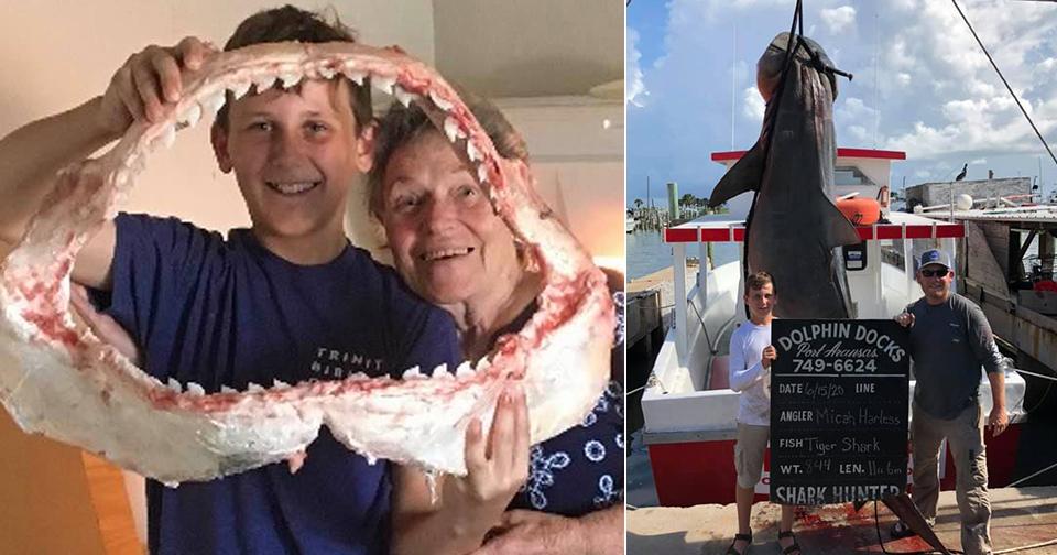 Životní úlovek: Teprve třináctiletému chlapci se podařilo vytáhnout z vody obřího žraloka!