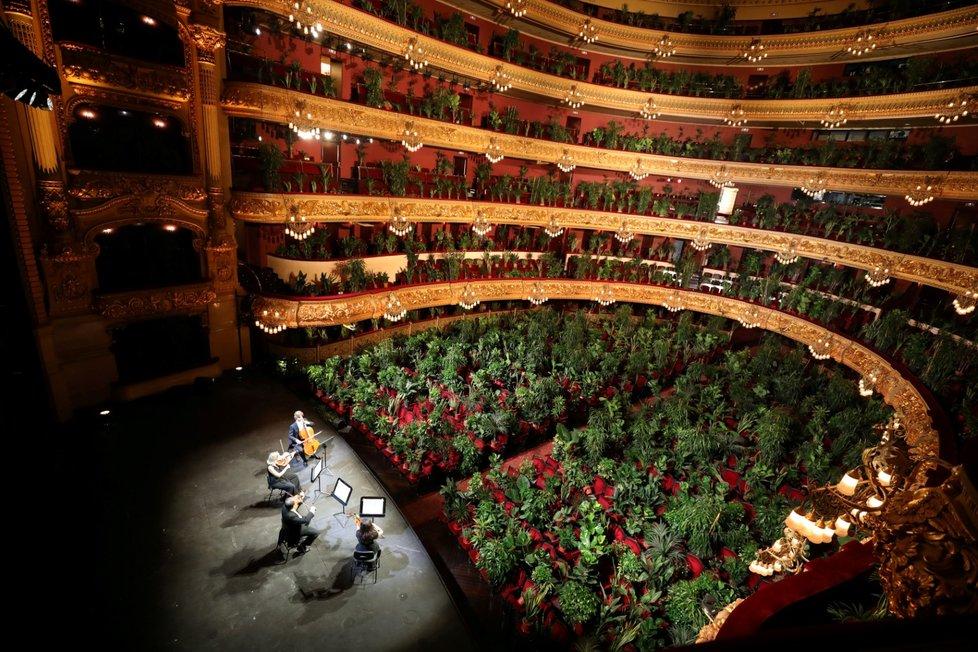 Opera v Barceloně odehrála koncert pro pokojové rostliny (22. 6. 2020)