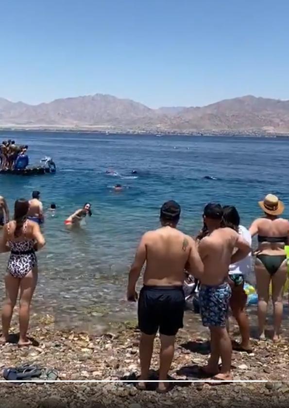 Obrovský žralok pěkně vyděsil plavce ve vodě i lidi na břehu. Trojhranná ploutev nad hladinou ale naštěstí patřila mírumilovnému žraloku velrybímu.