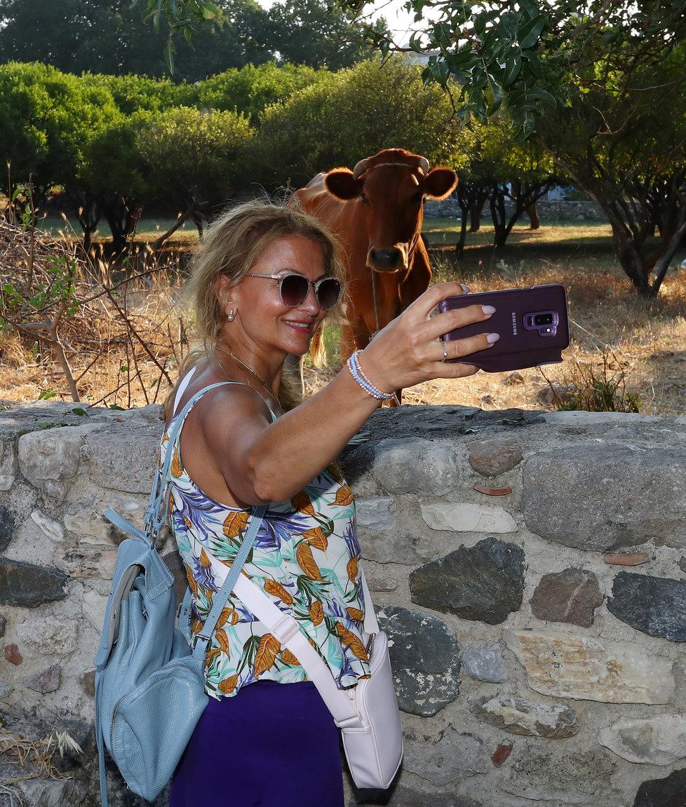 Na Kosu si Yvetta udělala selfie s místní krávou.