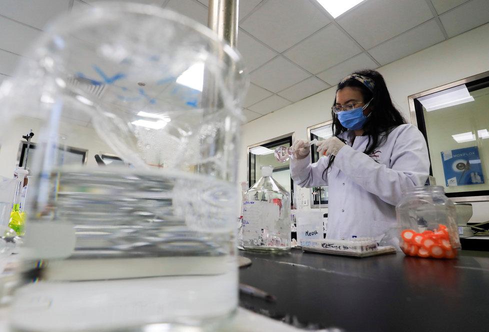 Výzkumem koronaviru se zabývají stovky vědců po celém světe.