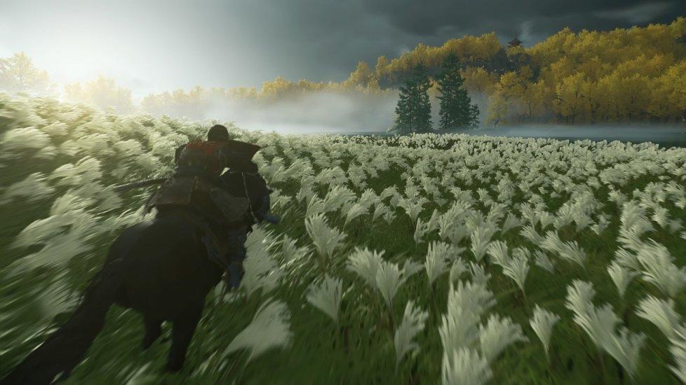 Ghost of Tsushima pro PlayStation 4