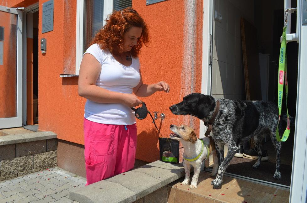 Artuš se spřátelil i s psem veterinářky Markéty Janouškové