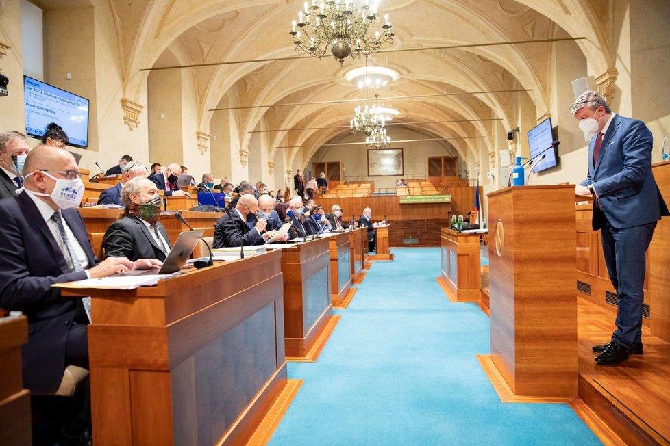 Jednání Senátu v době pandemie koronaviru: Vystoupil vicepremiér Karel Havlíček (za ANO) (12.11.2020)