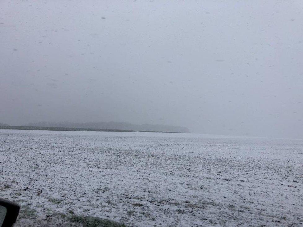 V Praze a okolí 5. dubna 2021 sněžilo.