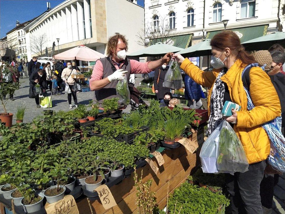 S koncem nouzového stavu se v pondělí 12. dubna 2021 otevřel Zelný trh v Brně, nejstarší nepřetržitě provozované tržiště se zeleninou a rostlinami ve střední Evropě.