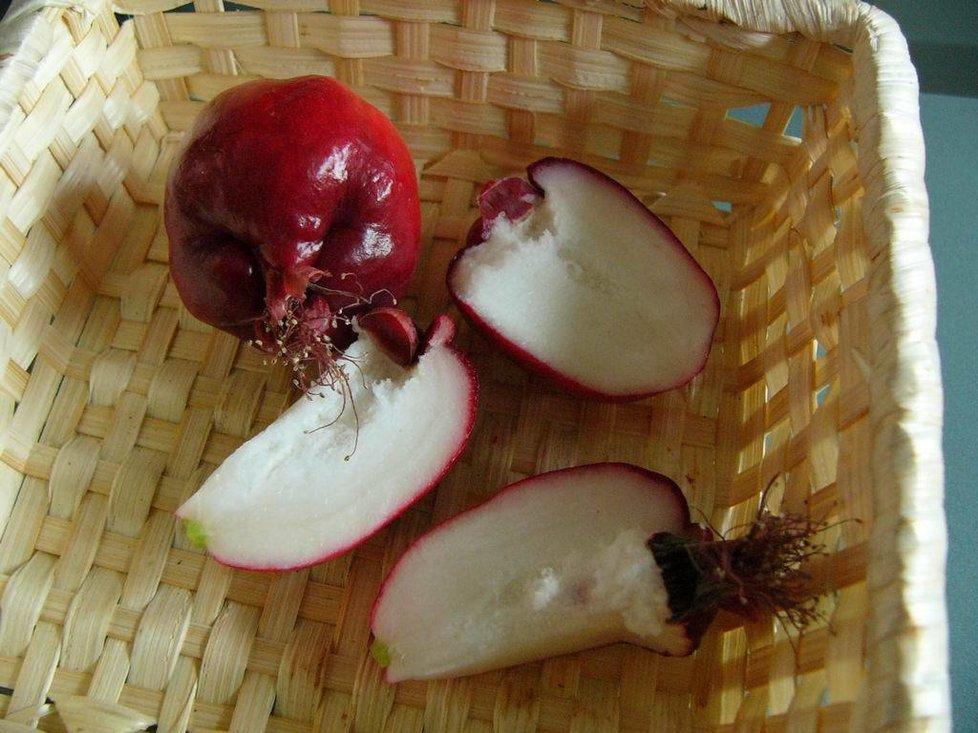 """""""Jablka"""" z jihovýchodní Asie. Na snímku odrůda Malay Apple."""