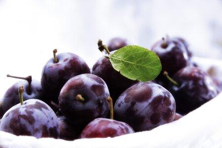 Švestky jsou oblíbeným ovocem. České sady však napadá nemoc šarka, která sladké plody ničí.