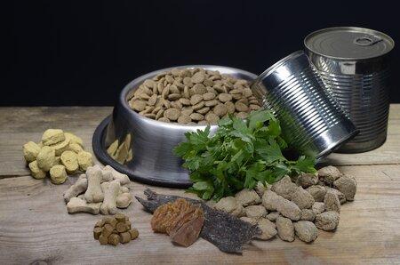 Pokud psa krmíte granulemi, pak nezapomeňte na dostatečný přísun čerstvé vody.