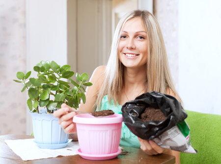 Rostlinu přesaďte, když se kořenový bal  tlačí z květináče spodem.
