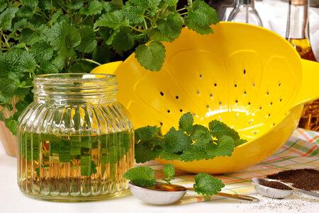 Z meduňkový sirupu uděláte teplý i studený nápoj. Můžete s ním i sladit.