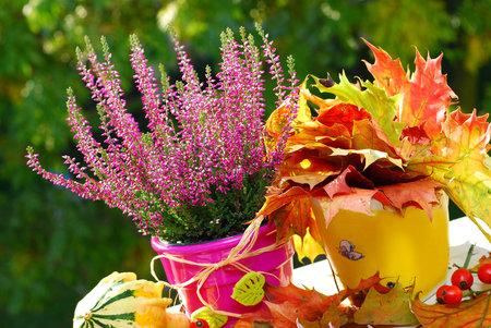 Říjnová zahrada hraje všemi barvami a je na ní spousta práce.