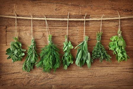 Některé bylinky jsou opravdu blahodárné co do jejich působení na hubnutí.