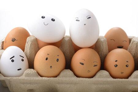 Barva vajec se liší podle toho, jakou barvu měla slepice.