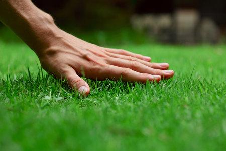 Dokonalý trávník není věda.
