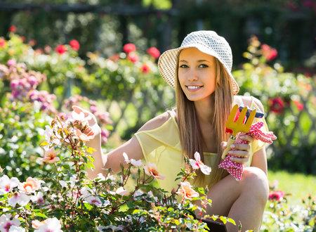 Růže je právem nazývána královnou všech květin.