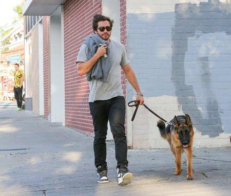 Jake Gyllenhaal se svým Attikem