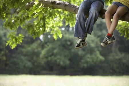 lezení na strom