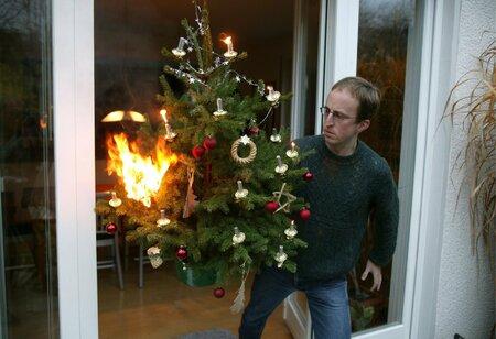 Stromeček chytne při troše nepozornosti snadno.