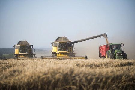 Česká zemědělská krajina je nevhodně uspořádaná pro to, aby čelila klimatické změně a intenzivnějšímu suchu, dodává Trnka. Upozornil ale, že zemědělci nejsou ti, kteří by za sucho mohli.