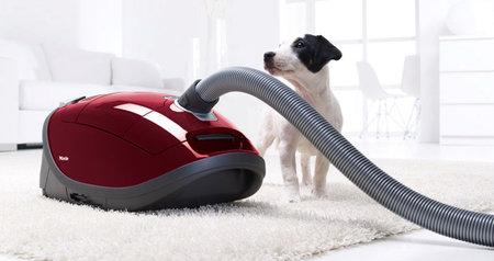 Vysavače Miele pro speciální nároky, model Complete C3 Cat&Dog s turbokartáčem a uhlíkovým filtrem