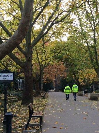 Strážníci v období Dušiček střeží hřbitovy mnohem více než obvykle.