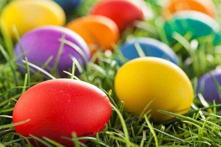 Průměrně si koupíme na Velikonce jedno plato vajec