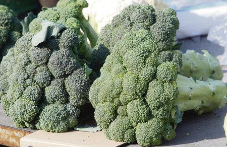 Pravidelná konzumace brokolice chrání žaludek před vředy i rakovinou