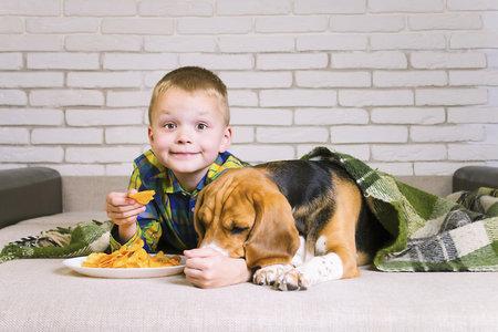 Se svým domácím mazlíčkem se nedělte ani o slané potraviny, jako jsou například chipsy. Pozor