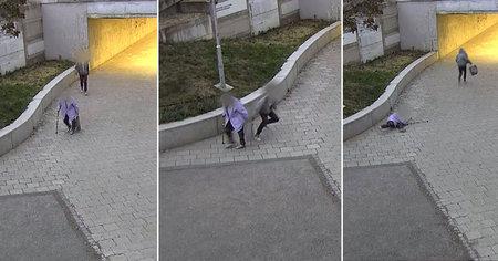 Mladík (17) si počkal u podchodu ve Staré Osadě na stařenku (80). Pak k ní zezadu přiskočil a okradl ji. Povalil ji přitom na zem.