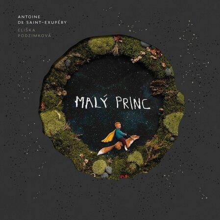 Interaktivní výstavu Malý princ v holešovickém Vnitroblocku můžete prožít od 25. října do 31. prosince. - Zkuste rozšířenou realitu právě teď.