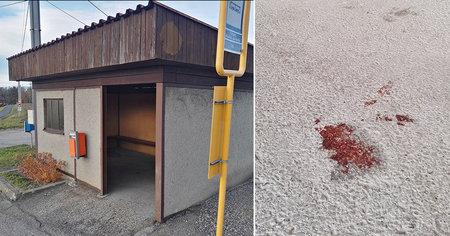 Mladík (17) zastřelil v Těrlicku kamaráda: Vražda kvůli drogám?