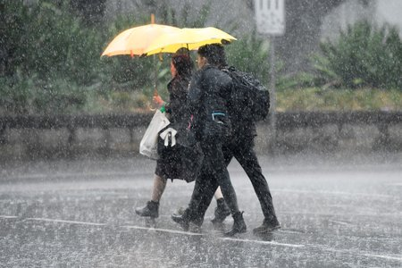 Prudký déšť