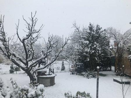 I přes oficiální příchod jara se vrátil sníh do Česka, ve kterém trvá stav nouze kvůli koronaviru (21. 3. 2020).