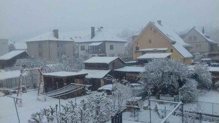 Na Šumavě nasněžilo navzdory oficiálnímu příchodu jara (21. 3. 2020).
