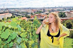 Milujete víno? Máme pro vás 7 tipů na vinobraní