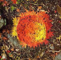 Podzim je tu: ozdobte si zahradu fantastickým ornamentem z barevného listí!