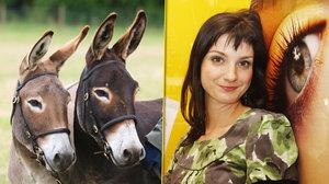 Tomu neuvěříte! Maurerová má doma dva osly a čtyři kachny