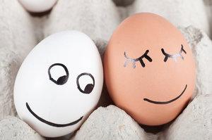 Není vejce jako vejce aneb 7 věcí, které je potřeba znát