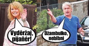 Iveta Bartošová si postavila hlavu: Až do svatby bez sexu! Co na celibát říká Rychtář?