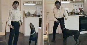 Gott jako milovník zvířat na archivním videu: Pes si zavyl se Slavíkem!